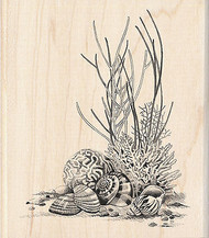 Coral & Seashells Ocean Wood Mounted Rubber Stamp by INKADINKADO 60-00546 NEW
