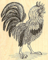 Fancy Rooster Large Wood Mounted Rubber Stamp Impression Obsession H7005 NEW
