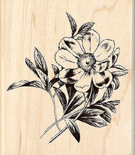 Flower Blossom Wood Mounted Rubber Stamp Brenda Walton by Inkadinkado NEW