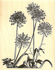 Flower Silhouette, Wood Mounted Rubber Stamp IMPRESSION OBSESSION - NEW, H16082