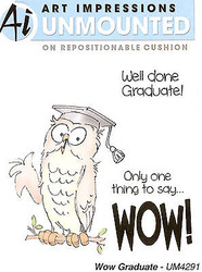 Graduation Owl Wow Unmounted Rubber Stamps with Cushion AI Art Impressions NEW