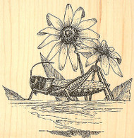 Grasshopper Summer Flowers Wood Mounted Rubber Stamp Impression Obsession NEW