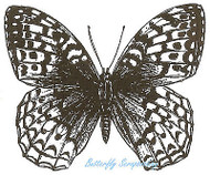 Great Spangled Butterfly Wood Mounted Rubber Stamp Northwoods Rubber Stamp New