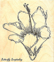 Hibiscus Flower Wood Mounted Rubber Stamp Impression Obsession Stamp G13198 New