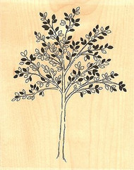 Leafy Tree #2, Wood Mounted Rubber Stamp IMPRESSION OBSESSION - NEW, L9644