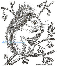 Nora's Winter Squirrel With Berries, Wood Mounted Rubber Stamp NORTHWOODS- M8323