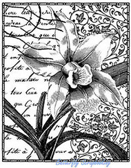 ORCHID Flower Postage Collage Cling Unmounted Rubber Stamp MAGENTA C43020-K NEW