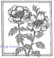Poppies Flower Square Wood Mounted Rubber Stamp NORTHWOODS MM8494 New