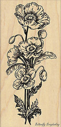 Poppy Parade Flower, Wood Mounted Rubber Stamp PENNY BLACK - NEW, 4379K