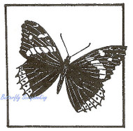 Red Admir Butterfly Square Wood Mounted Rubber Stamp Northwoods Rubber Stamp New