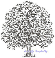 Red Oak Tree Wood Mounted Rubber Stamp NORTHWOODS M625 New