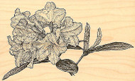 Rhododendron, Wood Mounted Rubber Stamp IMPRESSION OBSESSION - NEW, G12008