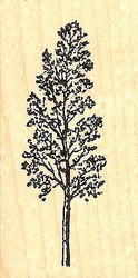 Single Spring Tree, Wood Mounted Rubber Stamp NORTHWOODS - NEW, D8567