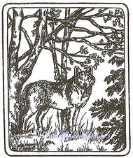 Single Wolf In Forest, Wood Mounted Rubber Stamp NORTHWOODS - NEW, M9523