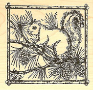 Squirrel On Pines In Frame, Wood Mounted Rubber Stamp NORTHWOODS - NEW, PP7361