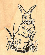 Standing Bunny Easter, Wood Mounted Rubber Stamp NORTHWOODS - NEW, E310
