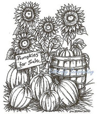 THANKSGIVING Pumpkins Sunflowers Wood Mounted Rubber Stamp NORTHWOODS P9833 New