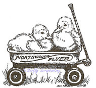 Two Ducks In A Wagon, Wood Mounted Rubber Stamp NORTHWOODS - NEW, M9420