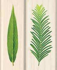 Verdure Leaf & Fern Wood Mounted Rubber Stamps Set by Inkadinkado NEW
