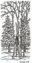 Winter Skis On Tree In Woods Wood Mounted Rubber Stamp Northwoods Rubber Stamp N