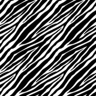 Zebra Cover A Card Background Unmounted Rubber Stamp Impression Obsession New