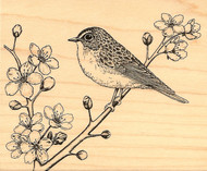 BIRD Cherry Blossom Wood Mounted Rubber Stamp Stampabilities New