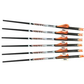 Ravin Arrows 400gr 6 PK .001