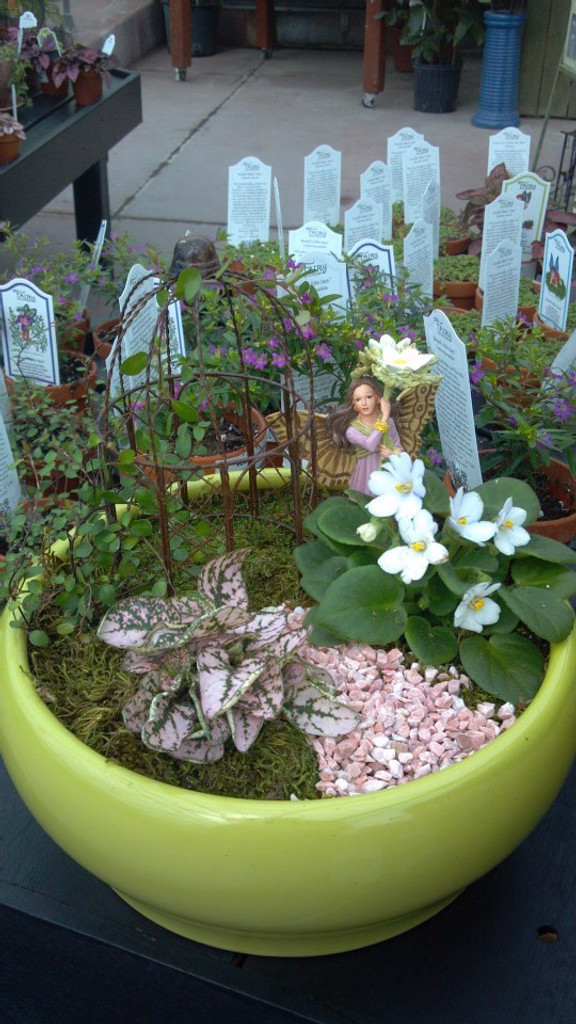 Fairy Garden Supplies