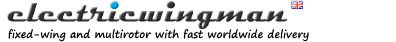 electricwingman-logo.png