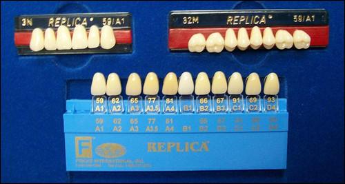 Replica Teeth