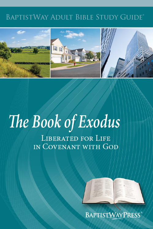 Bible study on Exodus which has 14 lessons for individuals or small groups. Paperback; 168 pages.