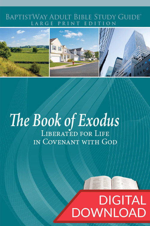 Digital large print Bible study on Exodus that helps people better understand their commitment to God. 14 lessons; PDF; 262 pages.