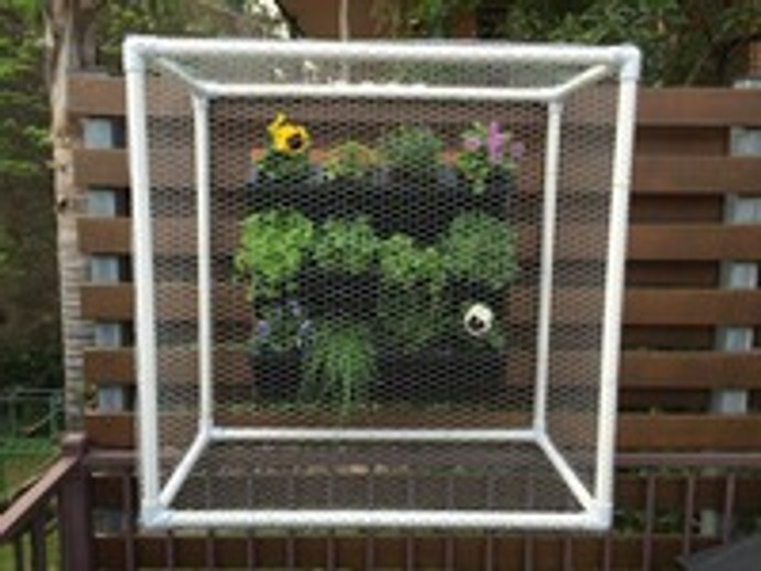 Protecting a vertical garden with PVC connectors and pipe
