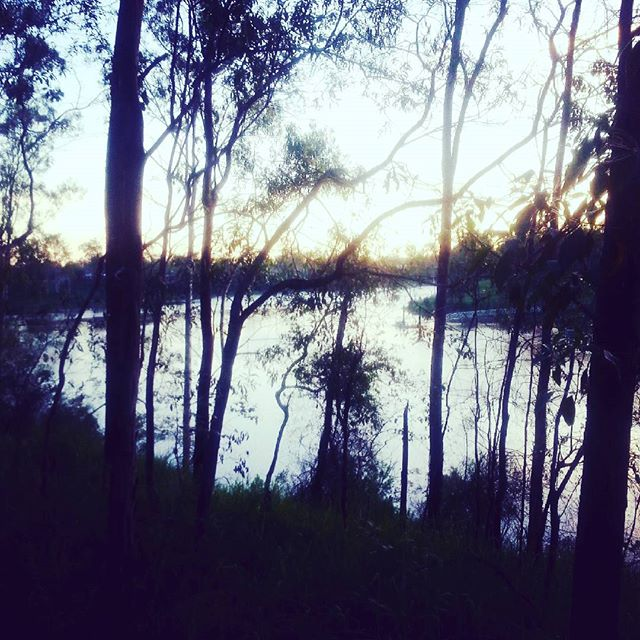 picture-of-brisbane-river.jpg