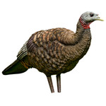 Avian X Turkey Decoy Breeder