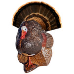 Rinehart Spot and Stalk Decoy Turkey