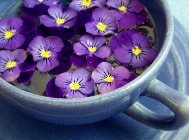 Florist coupon code