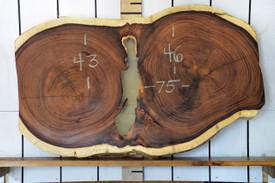 Guanacaste (Parota) Live Edge Wood Slab - H15045 - 75x45x3