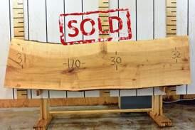 Ambrosia Live Edge Wood Slab - AM003 - 120x31x2 - side 1 - sold