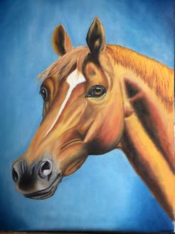 ,focus,ART_1283_11056,Artist : Alisha Gupta,Oil