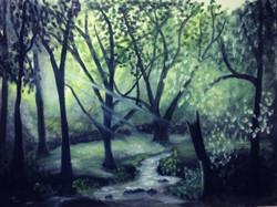 Forest, Trees, sun light, flowing water, woods,Light and Forest,ART_1798_14587,Artist : Ankush Bhayekar,Oil