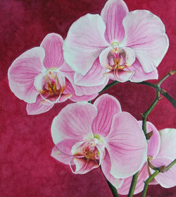 Orchids (ART_3116_21726) - Handpainted Art Painting - 9in X 10in