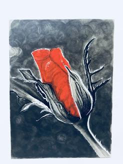 Rose bud (ART_3617_23419) - Handpainted Art Painting - 8in X 11in