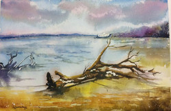 Untitled (ART_3346_23702) - Handpainted Art Painting - 21in X 14in