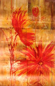 Flower,red flower,beautiful flowers,flower pair,pair of flowers