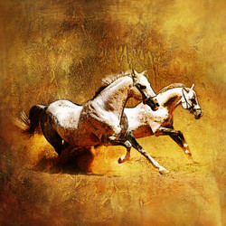 25Horse02 - 24in X 24in,25Horse02_2424,Yellow,Horse,Racing,jockey,Horses,Canvas,Oil Colors,Brown,Rs.3190,Latest Collection;Unsorted;Equestrian Art and Wildlife;By Orientation and Size/Square/Small (18in to 24in);Full Collection,Community Artists Grou