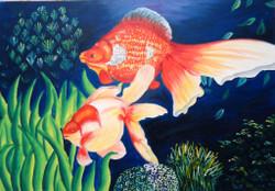 Fishes,Fish Pair,Fish Couple,Aquarium,Fish Pond
