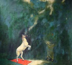 horse, horses, jumping horse, white horse