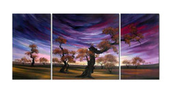 tree, trees, forest, violet background, violet sky, trees with violet background