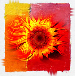 Sunflower,Floral,Flower,3D real sunflower